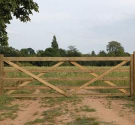 Essex Field Gate